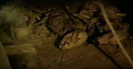 cellar 1989 bones