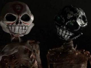 robin sydney skull heads pic