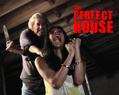 perfect house felissa rose