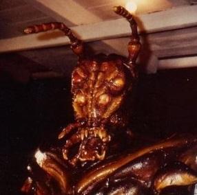 evil spawn bug
