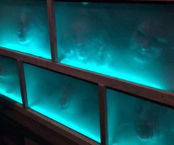 fish tank heads