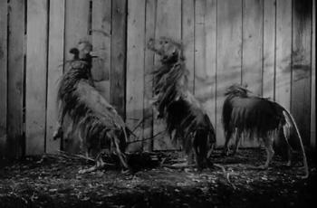 killer shrew dogs.jpg