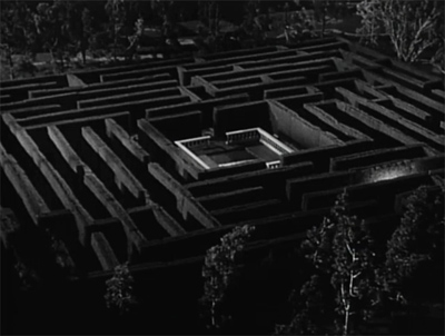 maze maze.jpg