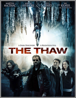 thaw cover