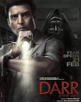 darr at the mall cover