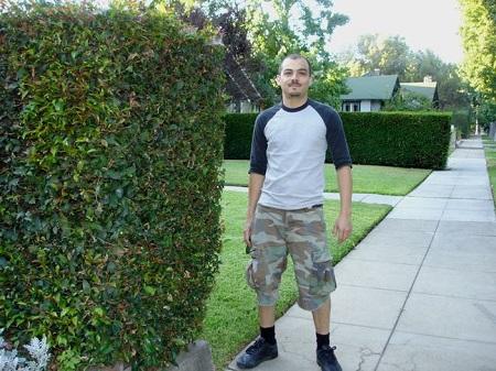 armando halloween shrubs