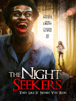 night seekers cover