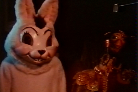 skullduggery bunny