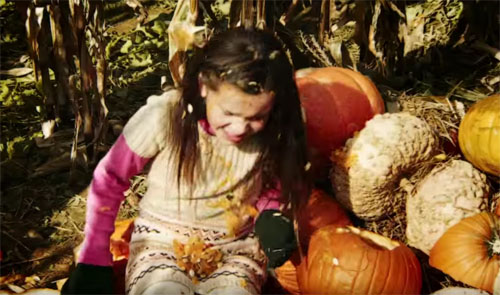 hallows eve pumpkins